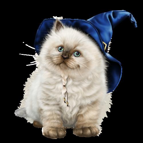 Котята (5).png