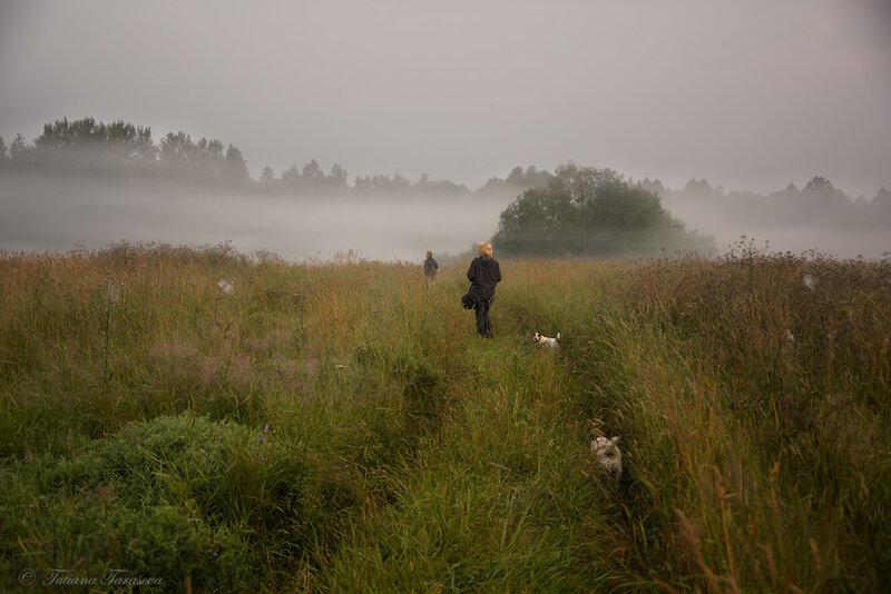 На охоту в туманы