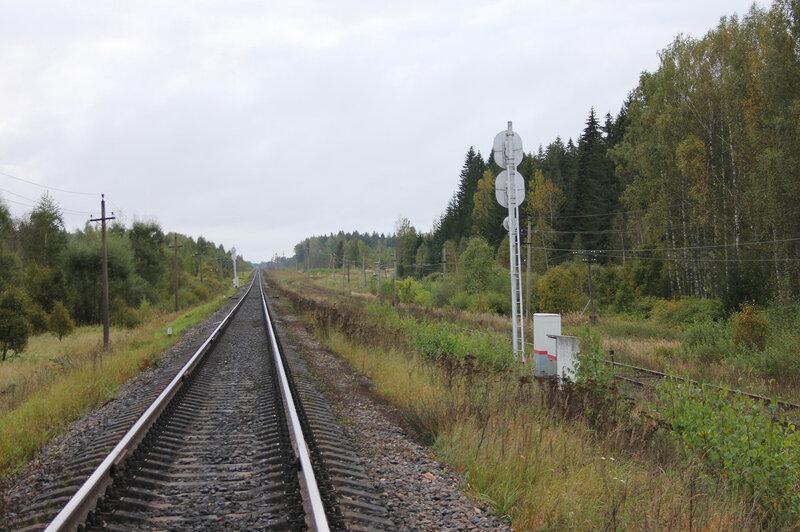Разделение путей на станции Земцы - левый путь на Ржев, правый на Жарковский