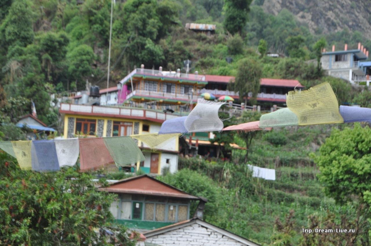 Джину на фоне знаменитых непальских флажков