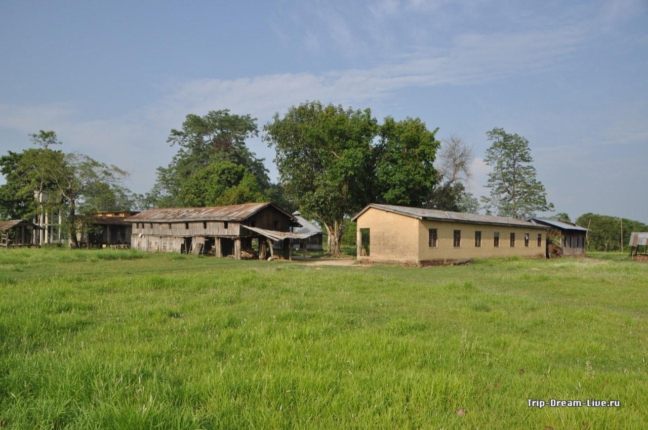 Центр по разведению слонов