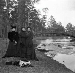 1904. Весенняя прогулка в Сокольники. Олений парк. Позади мост на остров