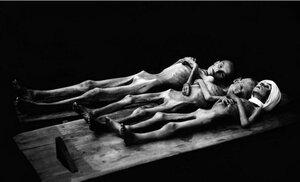 Детские трупы в мертвецкой