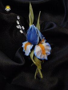 Цветы из кожи - Страница 22 0_8c1d2_ef666ef3_M