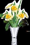 цветы