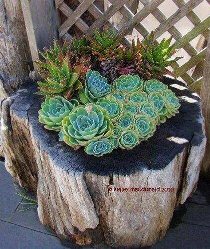 Декоративные вазы из дерева