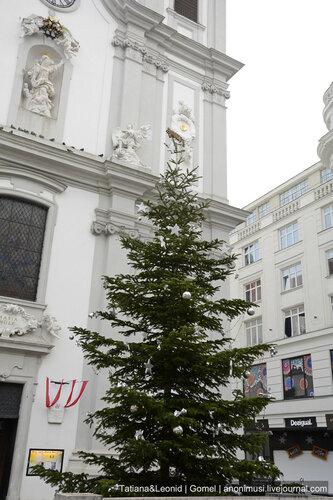 Ёлки Вены. Австрия
