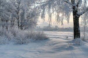 Зима правит...