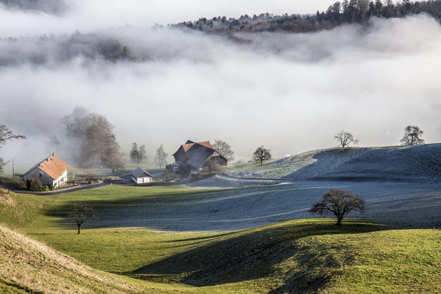 A Swiss landscape is covered with fog in Langnau am Albis, near Zuerich, Switzerland, 29 December 20