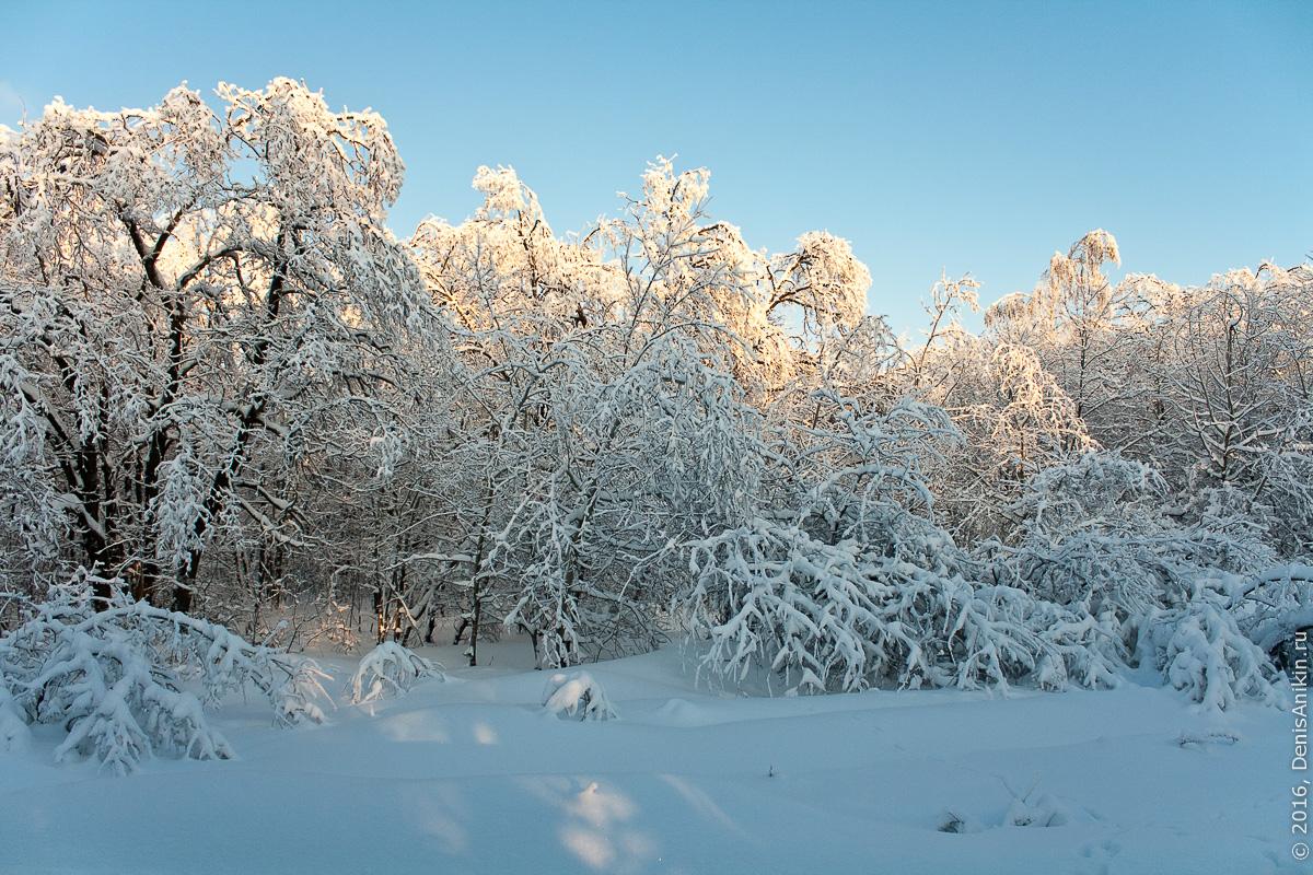 Зима на кумысной поляне 10