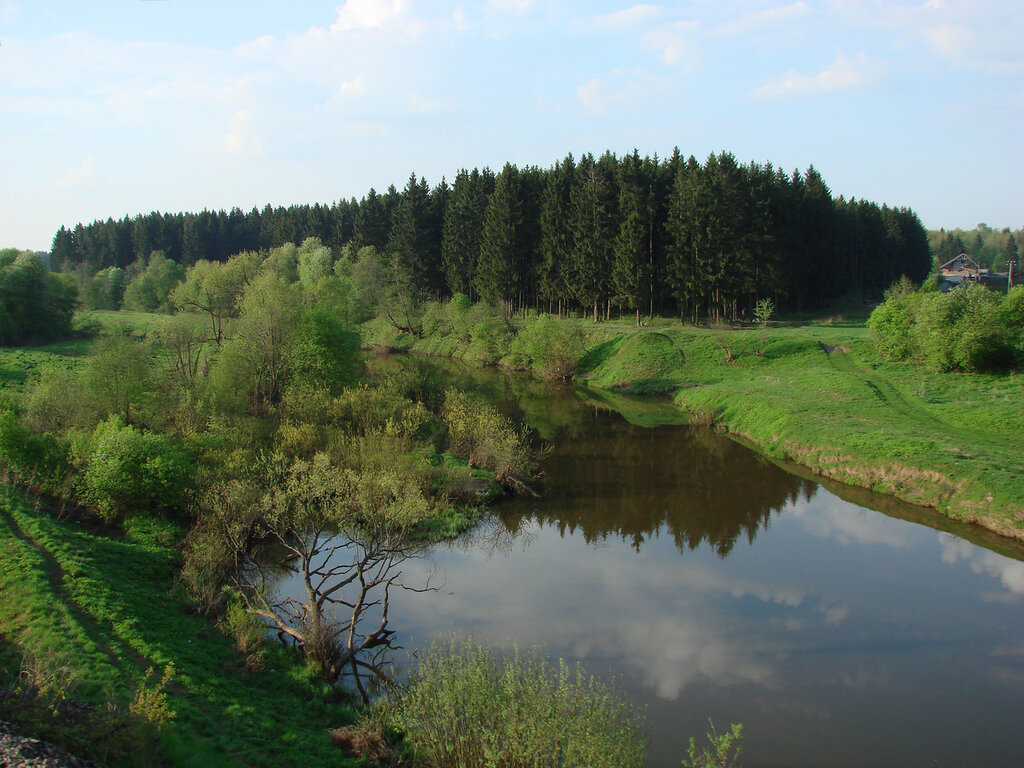 Река Гжать. Фото