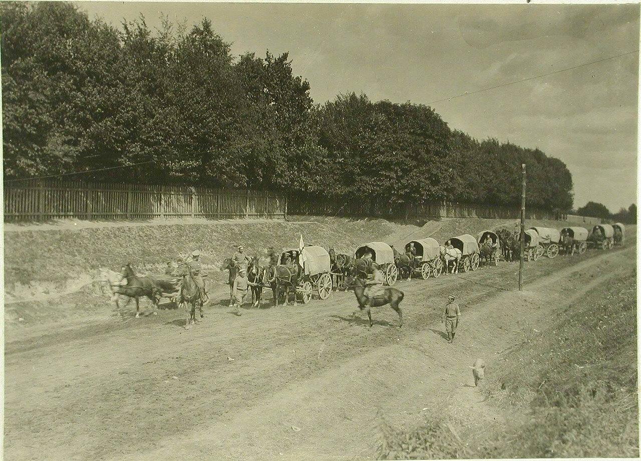 Конный санитарный транспорт отряда № 4 на марше. Местечко Клевань, Волынская гу. 1914