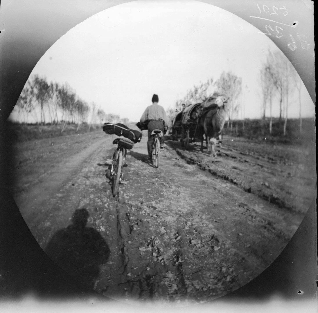 20 ноября. Томас Аллен на велосипеде встречает караван верблюдов на дороге из Чиназа в Ташкент