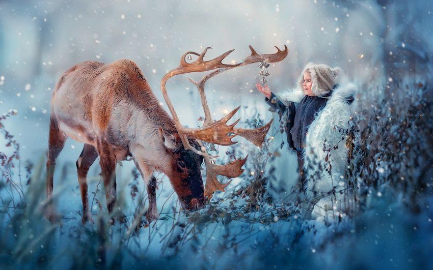 Новый год, дети, сказочный лес, животные
