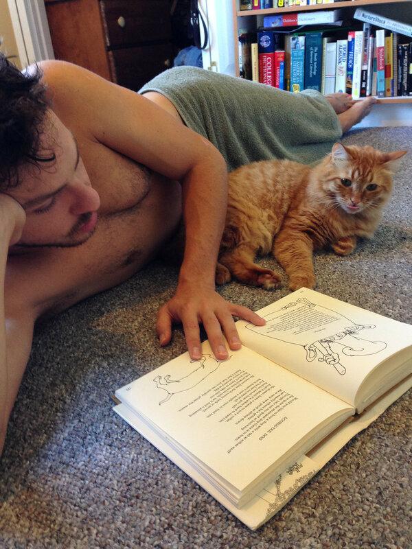 Мужчины и котики
