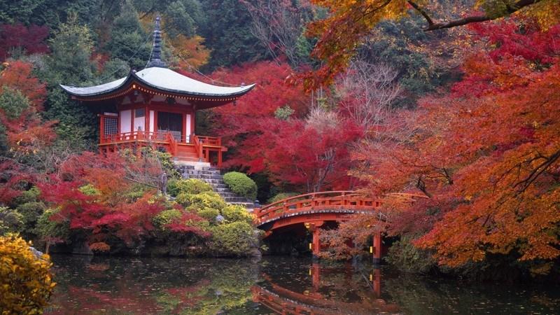 Две основные религии в Японии — это буддизм и синтоизм. Представители этих конфессий по некоторым оц