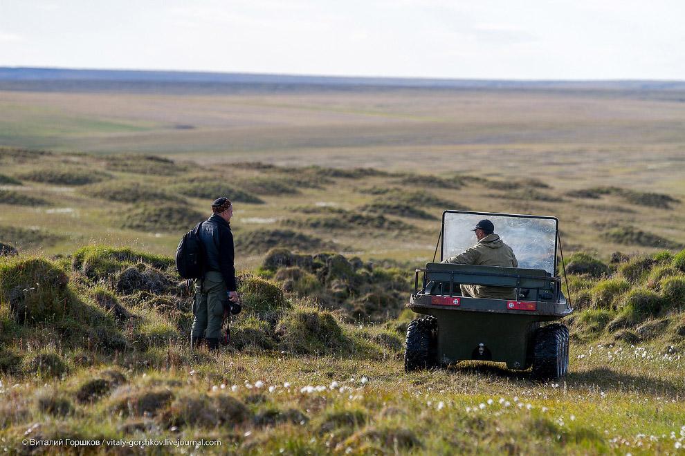 4. Попытка съёмки тундры с квадрокоптера.
