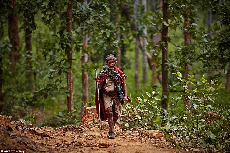 Рауте – искусные мастера по дереву. Они обменивают поделки из дерева на одежду и другие необходимые
