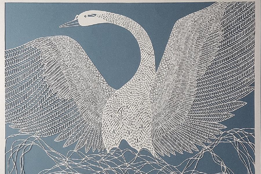 Легче перьев лебеди