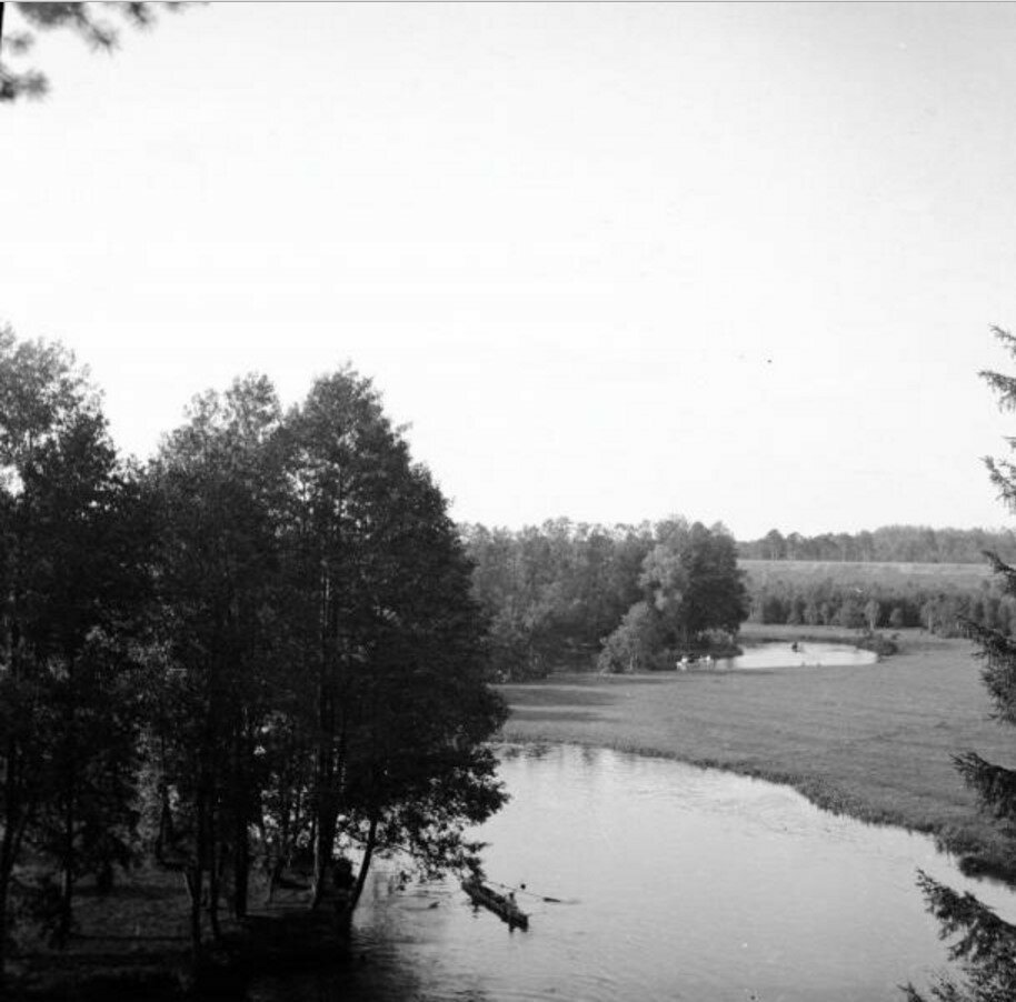 1904. Томилино. Вид с первого обрыва на речку