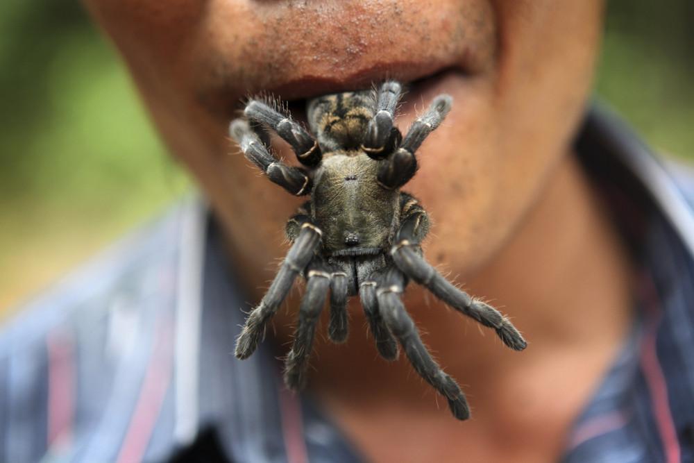 Камбоджийской город пауков