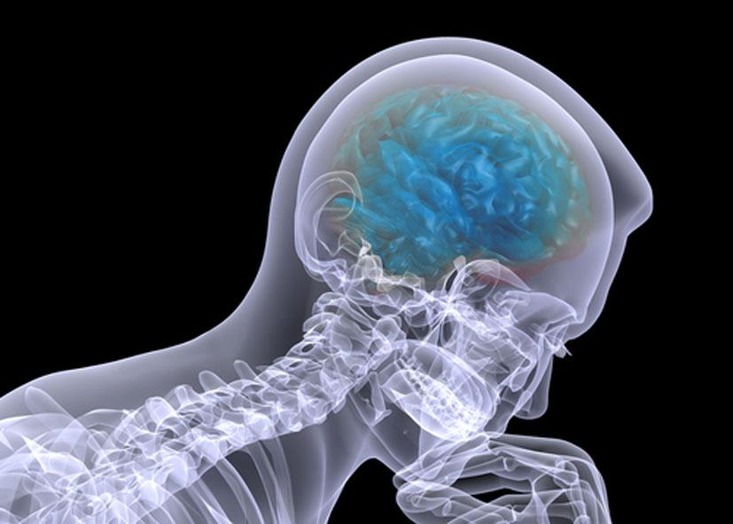 Ученые пояснили, откуда улюдей слабость кложным воспоминаниям