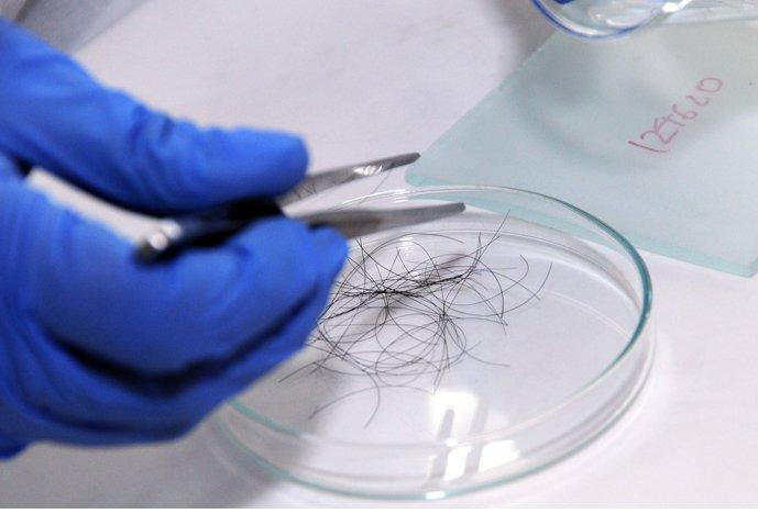 Химики научились составлять фоторобот правонарушителя поодному волосу
