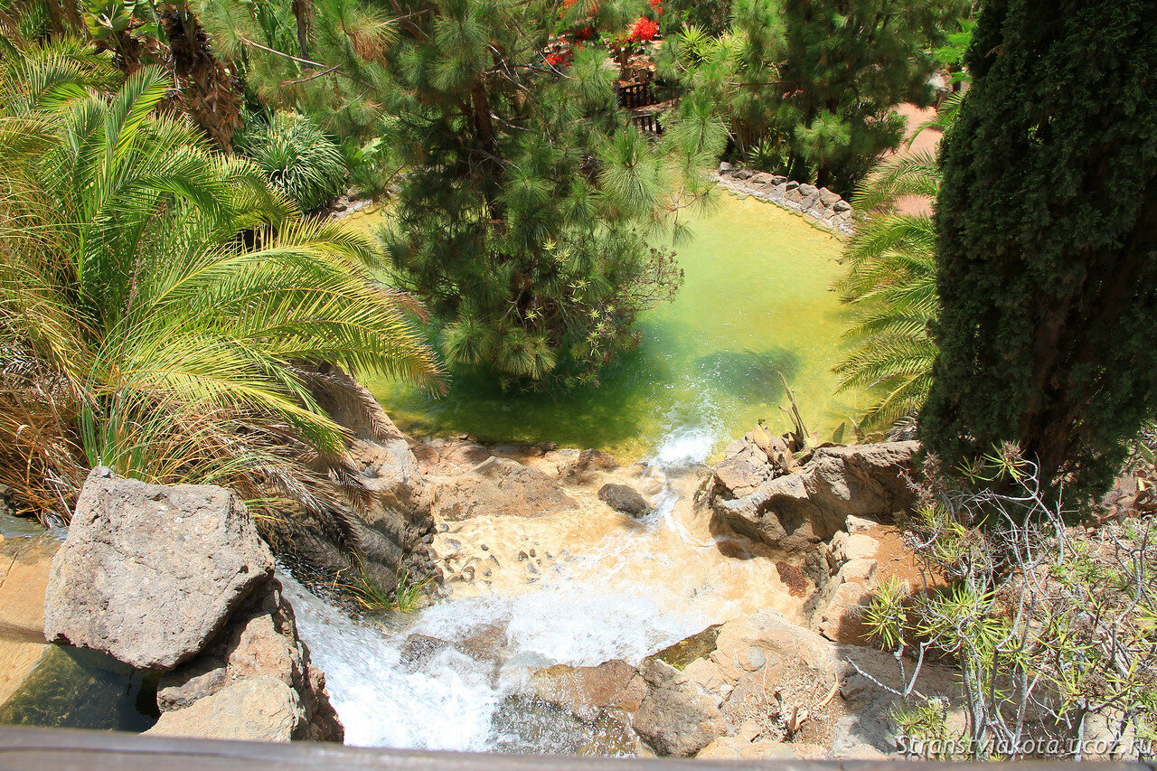 Palmitos Park, Гран Канария