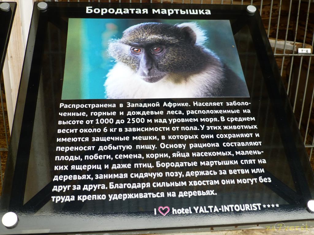 Гостиница Ялта-Интурист (Ялта, Крым)