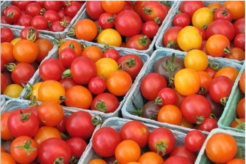 помидоры.jpeg
