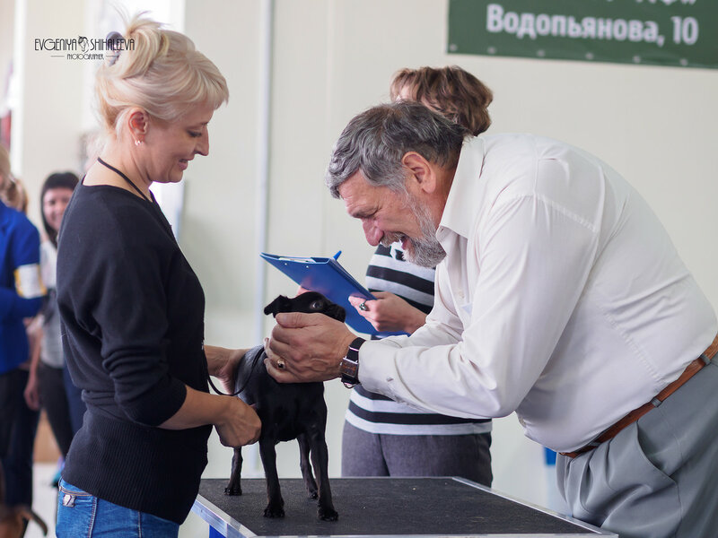 https://img-fotki.yandex.ru/get/117896/259726784.da/0_20c73a_d9337366_XL.jpg