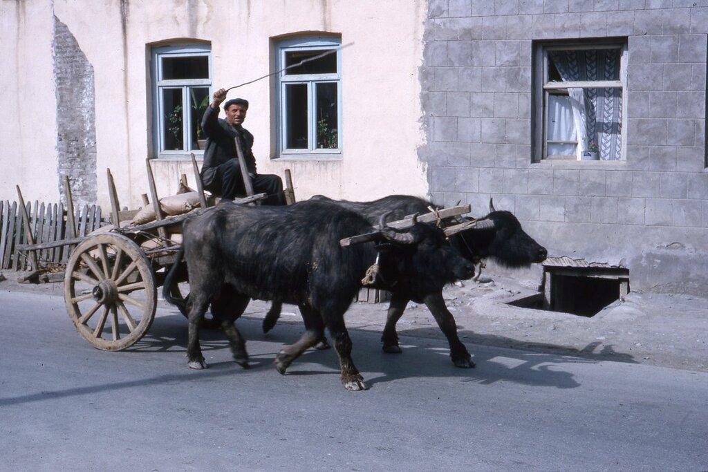MA25 Samarkand Erevan Kiev Dushanbe Tashkent etc img766 Ananuri.jpg