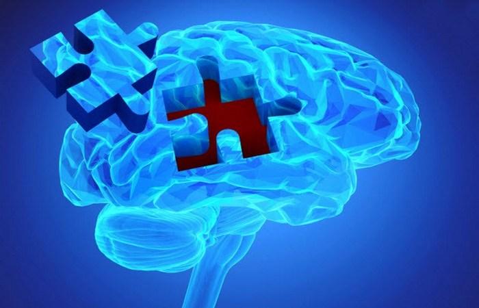 PKMzeta. Относительно недавно неврологи установили, что мозг не является биологическим жестким диско