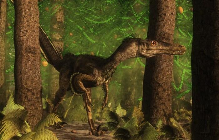 Динозавры. Второе пришествие. В настоящее время установлено, что динозавры имеют птичье происхождени