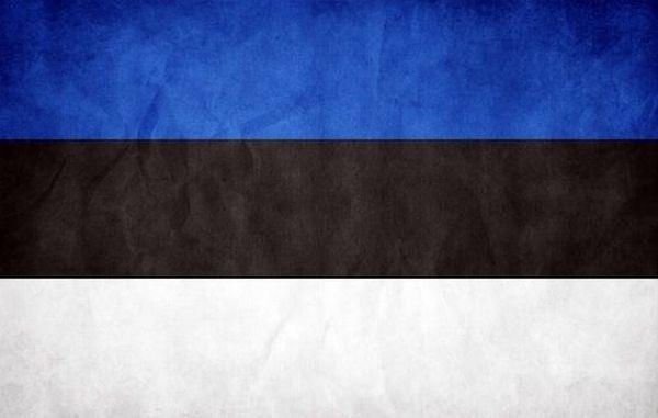 77 фактов об Эстонии глазами россияннина (7 фото)