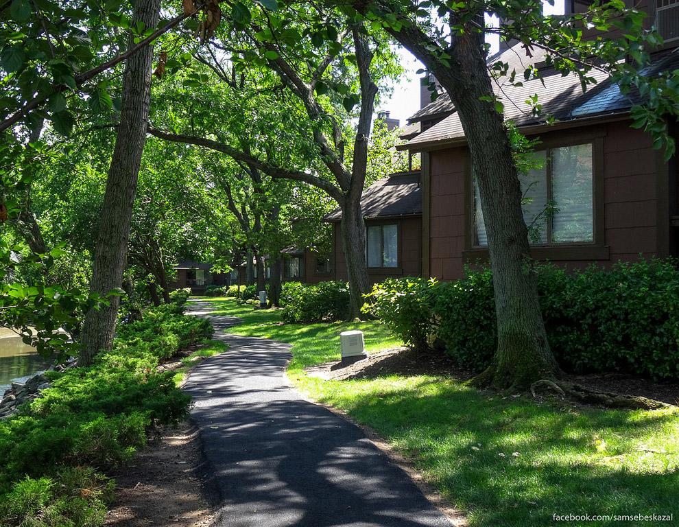 41. Дворик между таунхаусами. Зелени столько, что почти не видно соседних домов.