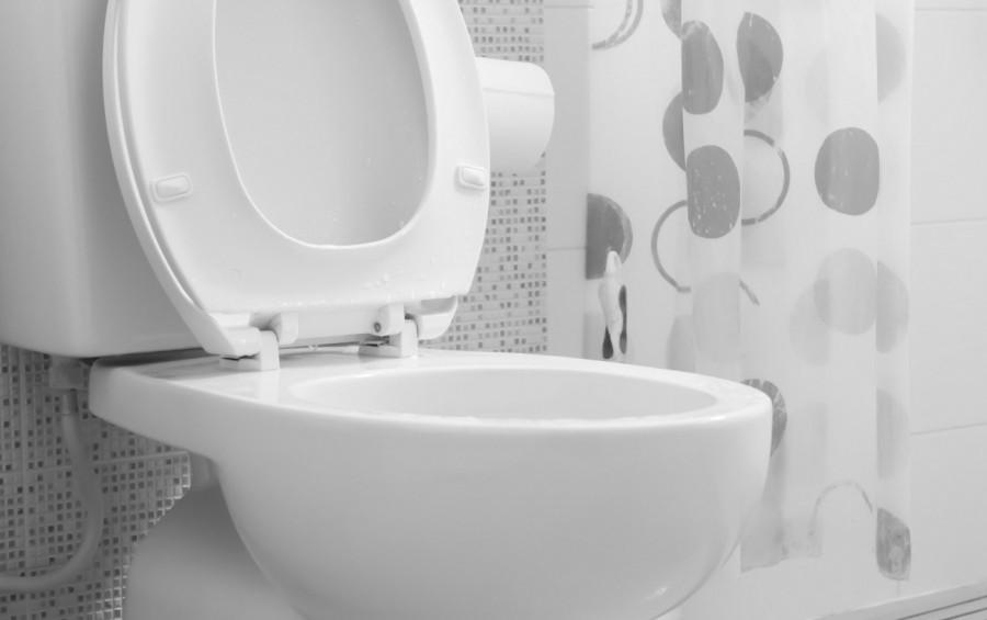 7. В Швейцарии нельзя смывать туалет после 10 вечера Этот закон можно считать одним из нелепых. Объя