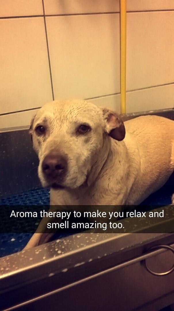 «Ароматерапия, чтобы ты расслабилась, ну и вкусно пахла».