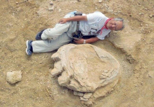 Таинственные следы гигантского динозавра обнаружили впустыне Гоби