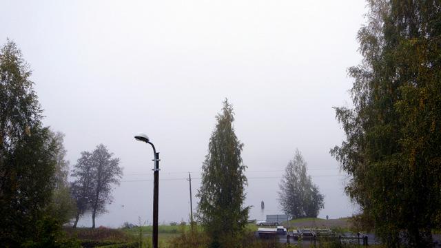 прогулка, лес, озеро, финляндия