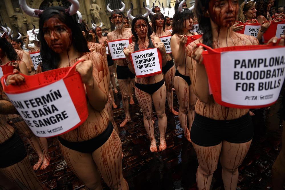 Кровавый протест зоозащитников в Испании