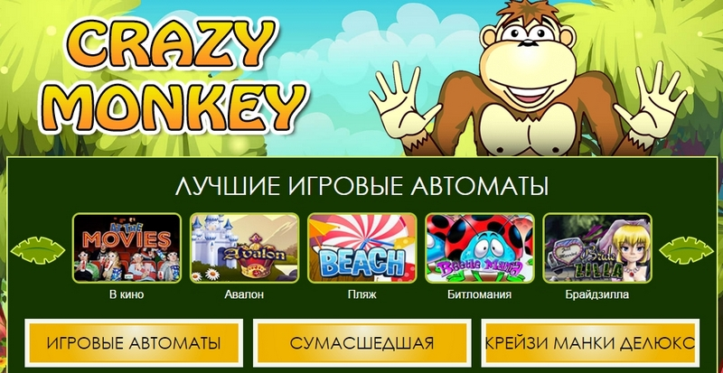 Новый мир игровых автоматов – Crazy Monkey