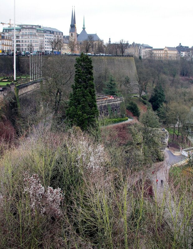 Luxembourg in January