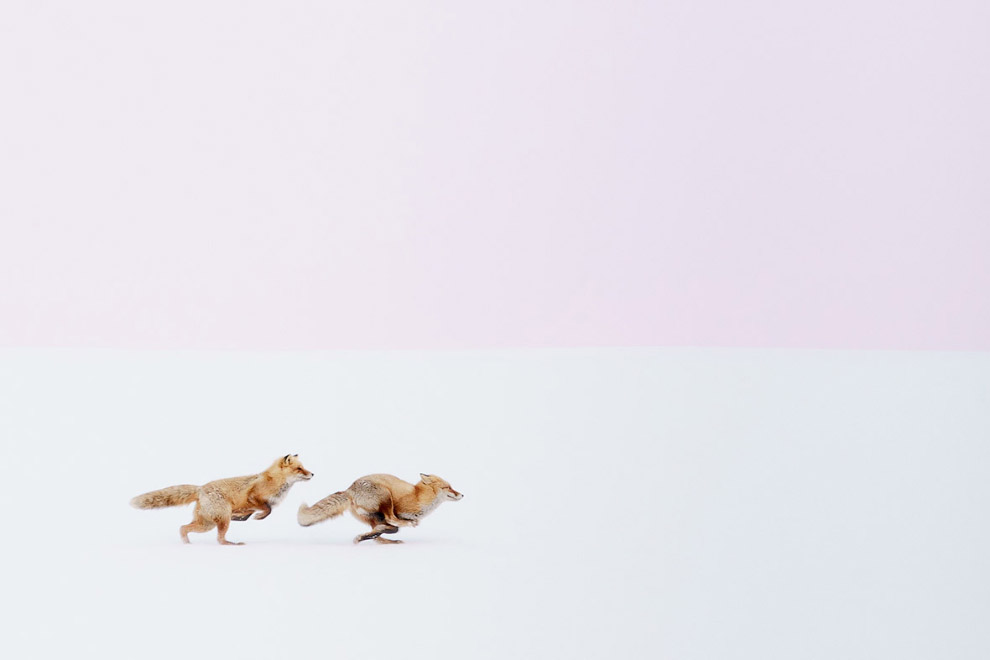 8. Третье место в категории «Города»: небесное представление. (Фото Jeremy Tan   National Geographic