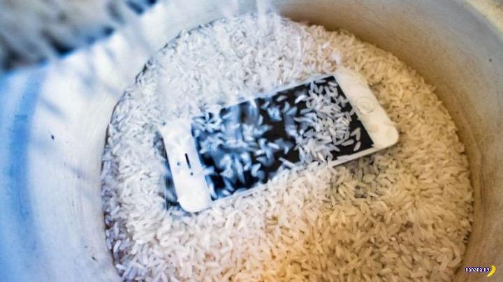 Рис не очень эффективен для телефонов-утопленников (1 фото)