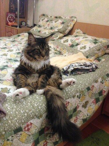 11_Посидеть на кровати.JPG