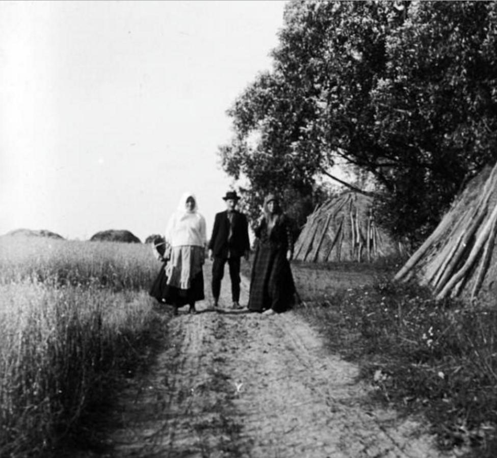 Трое крестьян на сельской дороге