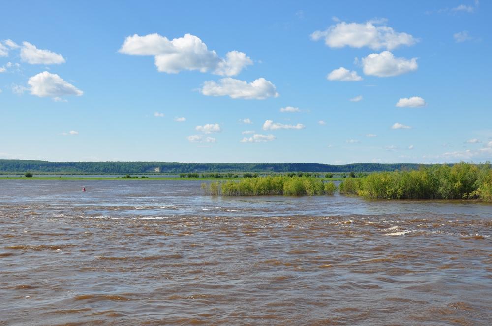Негре воды обеих рек почти два километра текут смешиваясь одна