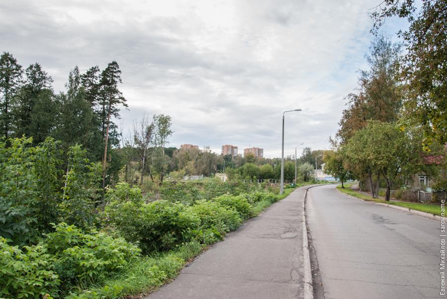 на Октябрьском проспекте вырубили деревья
