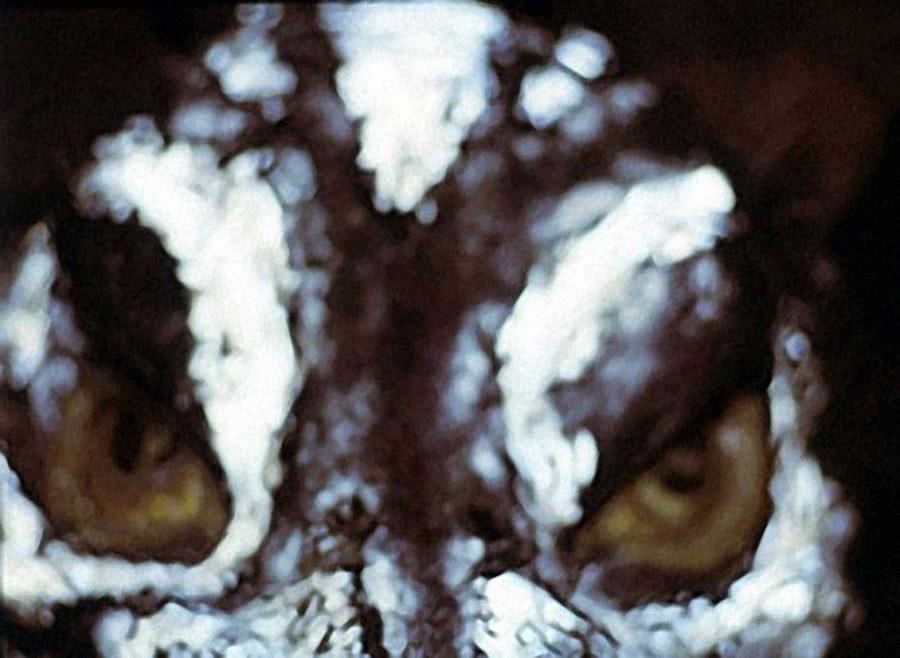 17. «В подборе на эту роль нельзя было ошибиться — только появлением настоящего монстра в кадре